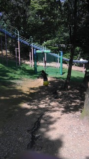 自遊の森4.jpg
