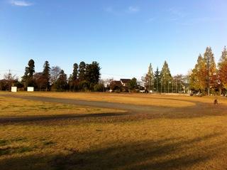 太郎丸公園の写真3.JPG